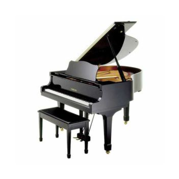 Piyano dersi Bakırköy Müzik Enstitüsü'nde başlamıştır.